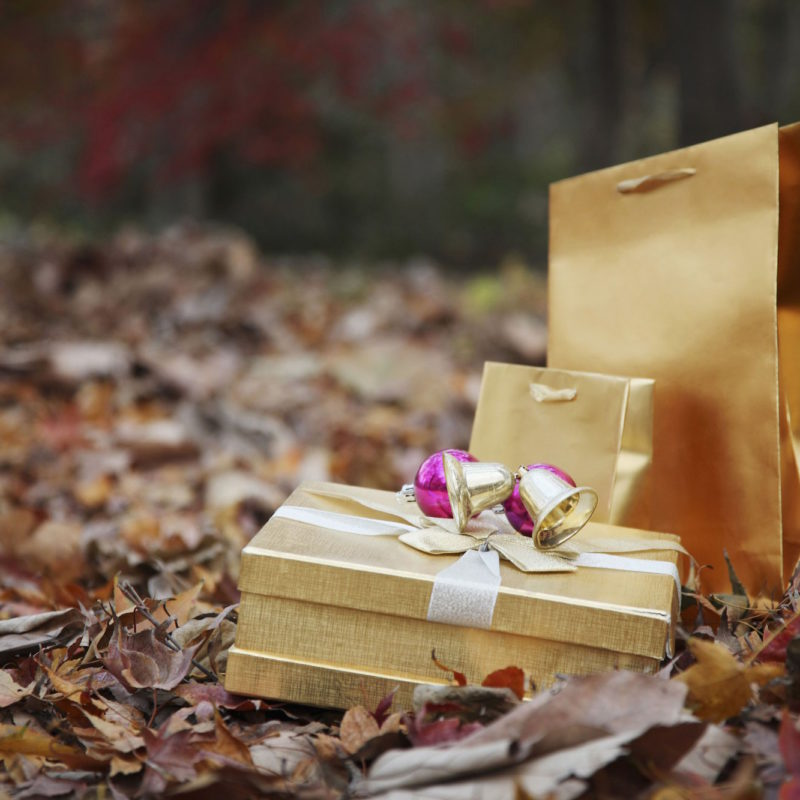 Top 5 Writing Gifts to Gift Yourself This Christmas