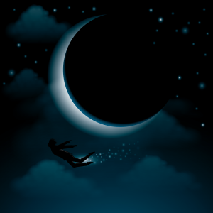 Fairy and Moon
